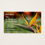 Artist Business Cards