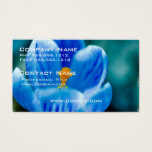 Blue Crocus Business Cards