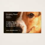 Cardigan Welsh Corgi Dog Business Card