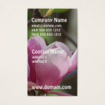 Pink Magnolia Business Card