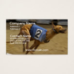 Racing Greyhound Dog Business Card