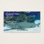 Sharks in Coral Reef Business Card